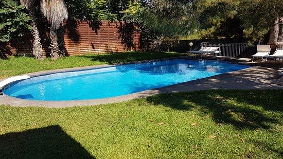 OttoMood B&B: piscina estera