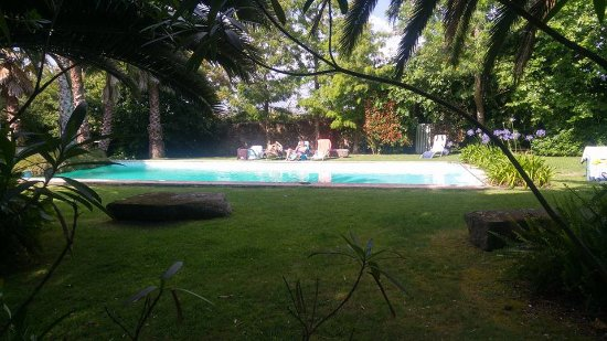 Quinta das Alfaias: Pool set in mature gardens