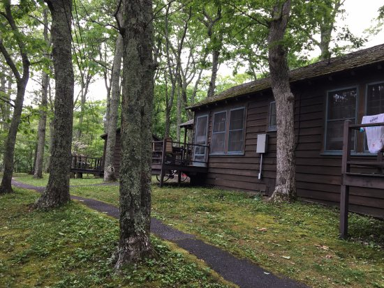 Lewis Mountain Cabins : Typical cabin
