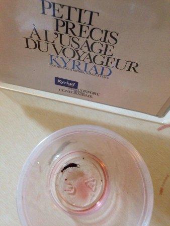 Kyriad Lyon Est - Bron Eurexpo: photo1.jpg