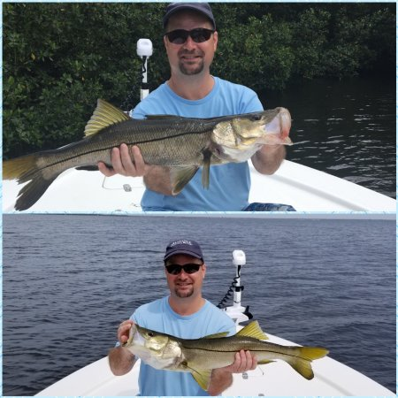 Gulf to bay fishing charters clearwater fl address for Fishing clearwater fl