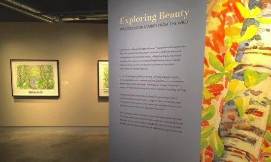 Palo Alto, CA: The Exploring Beauty journey exhibition.