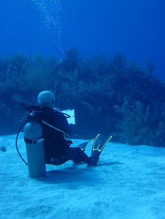 Palo Alto, CA: Tony Foster painting underwater at the Cayman Islands.