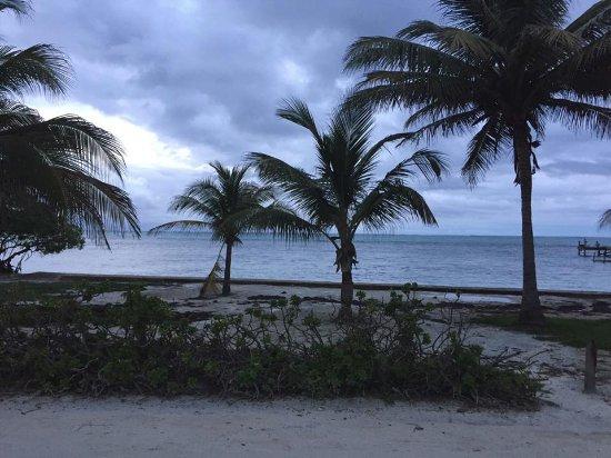 Oasis del Caribe: Beach area