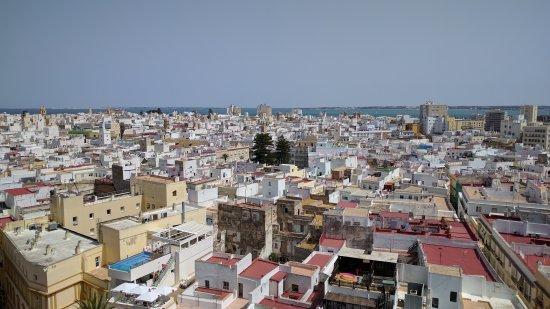 Catedral de Cádiz: IMG_20170624_122747_large.jpg
