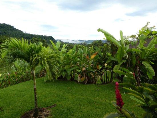 Bilde fra Hotel Lomas del Volcan