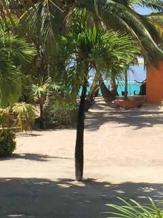 Foto Matachica Resort & Spa