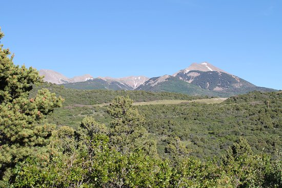 Whispering Oaks Ranch: View from Sagewood Cabin