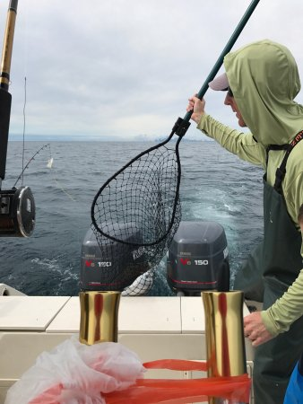 Why knot chicago fishing charters is it worth visiting for Chicago fishing charters