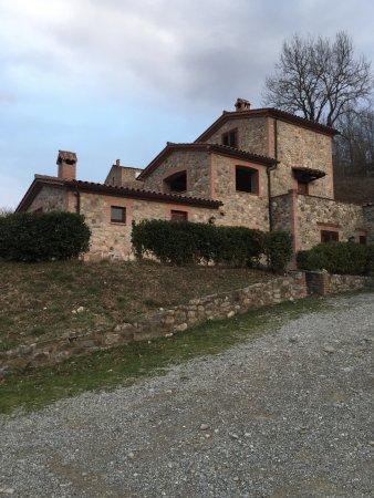 Ficulle, Ιταλία: vista de las cabañas de alojamiento. todas muy cómodas