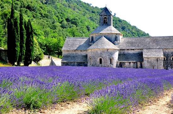 Simply Provence Tours