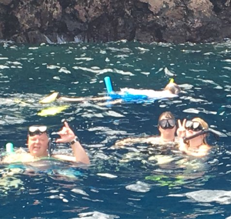 Sea Quest Snorkel Tours: photo0.jpg