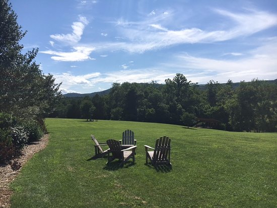Jefferson Vineyards : A great place to relax