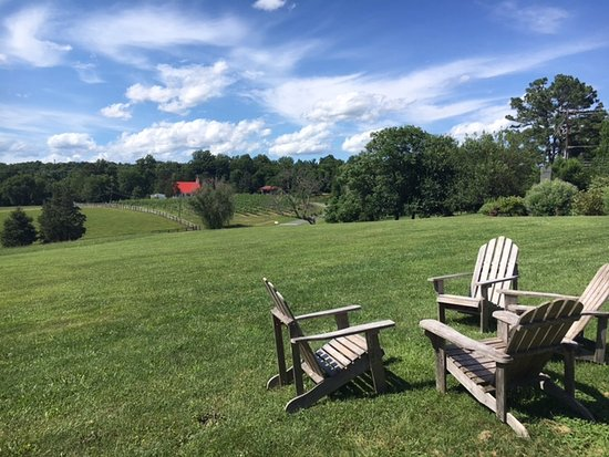 Jefferson Vineyards : Lots of chairs to enjoy the views
