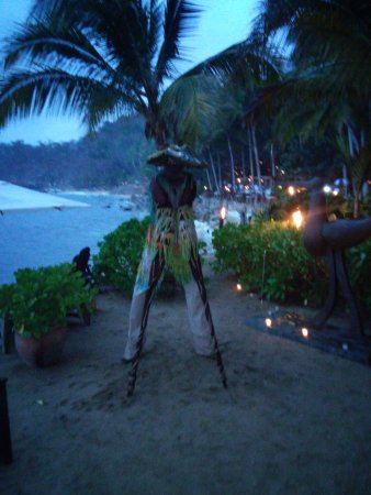 Rhythms of the Night by Vallarta Adventures: One of the performers