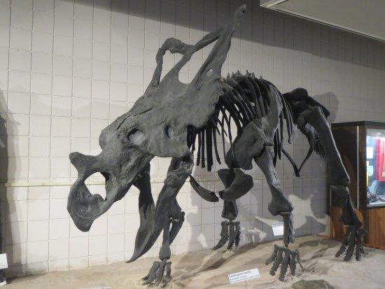 Price, UT: Stegosaurus ? has frill