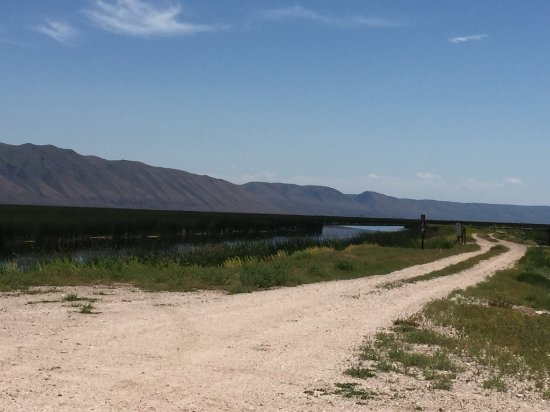 Montpelier, ID: Long and winding road filled with birds