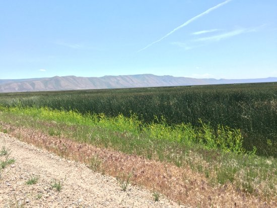 Montpelier, ID: Idaho foothills in the distance