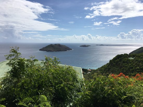 Le P'tit Morne Hotel : View from hotel