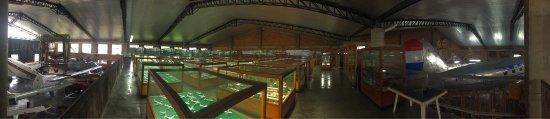 Museo Aéréo Fénix: photo0.jpg
