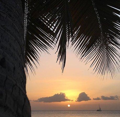 Les Anses d'Arlet, Martinik: photo1.jpg