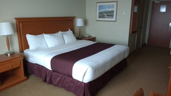 Luxury Days Inn & Suites Collingwood Standard King Size Bed New Design - New king size bedroom For Your Home
