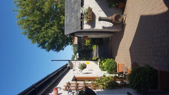 Brecon, UK: Garden June 2017