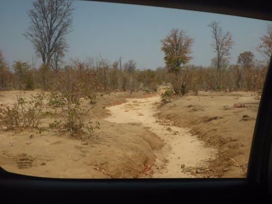 Kasane, Botsvana: Vom rechten Weg abgekommen