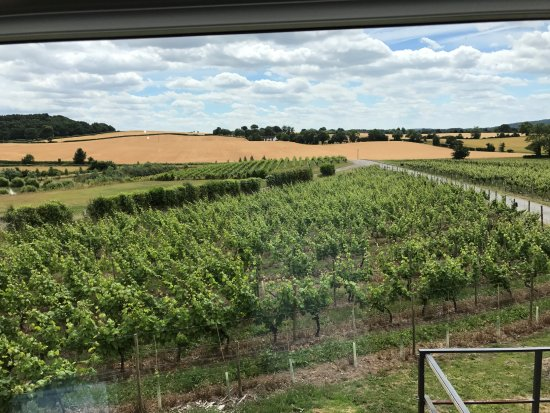 Bobbington, UK: View from wine loft