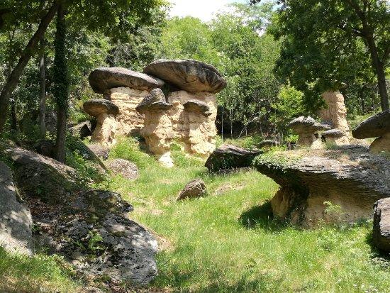 빌라 산 코스탄조 사진