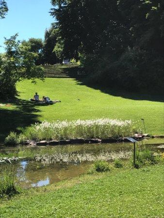 Botanischer Garten: photo6.jpg