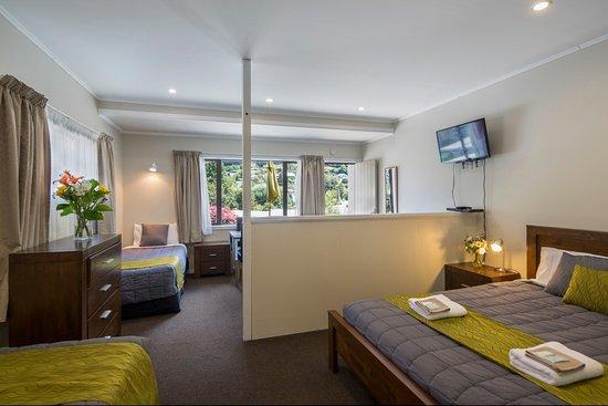 Abba Court Motel: Studio apartment with mountain views
