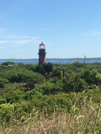 Oak Bluffs, MA: Aquinnah Light House
