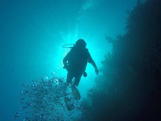 Sandy Bay, Honduras: photo0.jpg