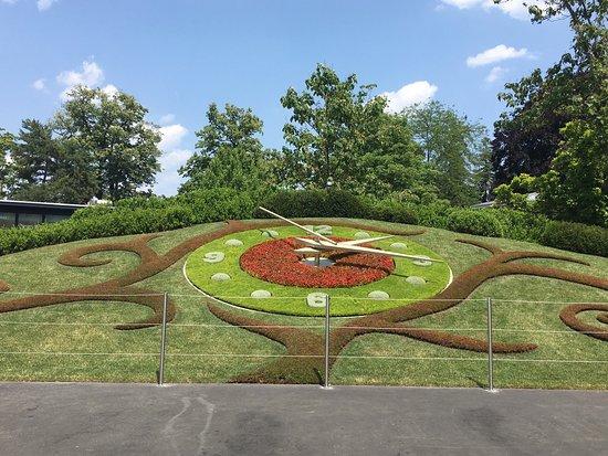 Flower Clock: photo0.jpg