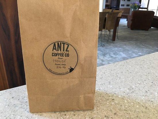 Antz Pantz Coffee