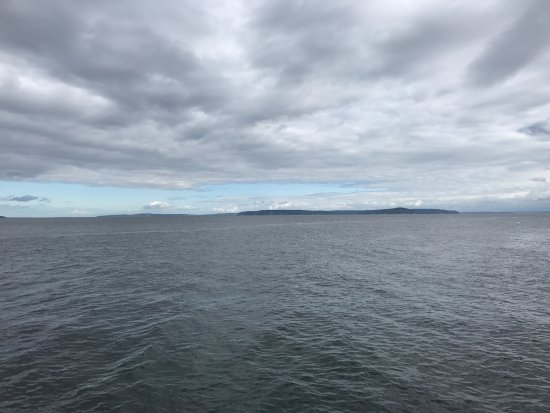 Edmonds, WA: No orcas in this picture, but they were there - lol!