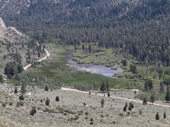 Lee Vining, CA: Flooded Meadow & Campgrounds Below Tioga Road