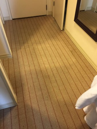 Clayton, MO: floor in room