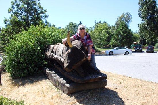 Felton, كاليفورنيا: The bull