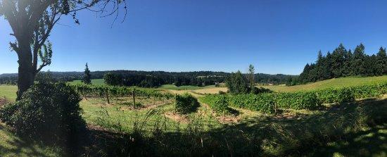 Oregon City, Орегон: photo1.jpg