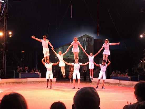 Circus Flora