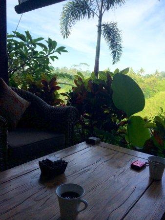 بيداداري برايفيت فيلاز آند ريتريت: Little coffee table outside the room overlooking the jungle