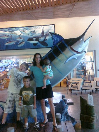 Dania Beach, FL: IGFA Fishing Hall of Fame & Museum