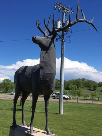 "Vining, MN: The Elk took 229 hours and 1,120 pieces. It weighs 800 lbs. and is 10'6"" tall."