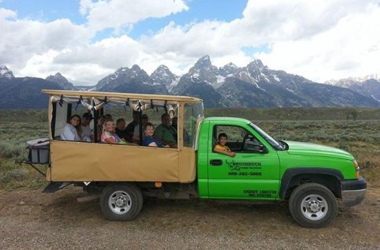 Safari dans la faune du Grand Teton...