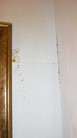 Best Western Plus Milton: the wall beside the bathroom mirror. Looks like mould.