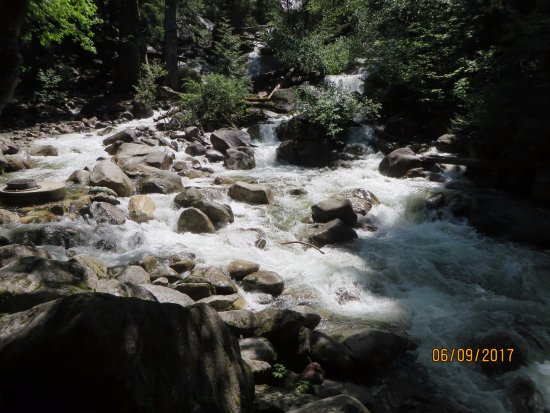 Squamish, Canada: Water rushing down the creek
