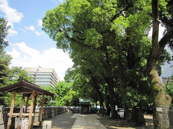 Kumano Sansho Daigongen-gu