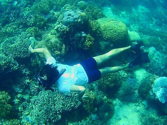Halal Lombok Holidays: snorkeling gili layar
